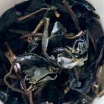Dragon Blood 2015 Spring Lin Cang Zi Juan Raw Purple Tea