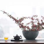 Apsara Bian Xi Shi Jianshui Zitao Purple Clay Teapot
