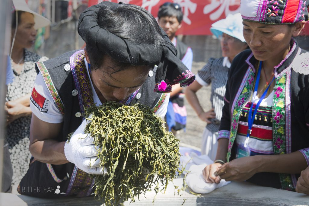 2016 Yiwu Tea Competition in Pictures