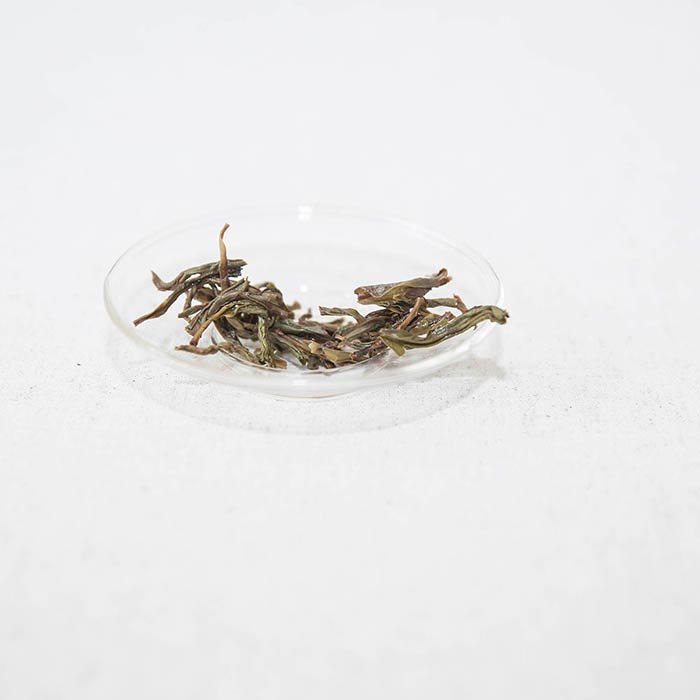 blackbird-chiye-dancong-oolong-5