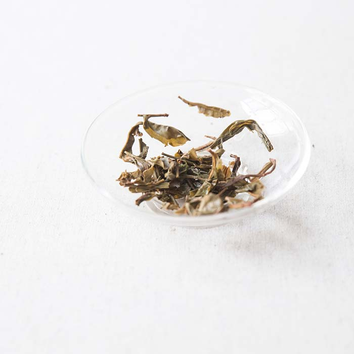 mad-king-ban-zhang-raw-puer-9