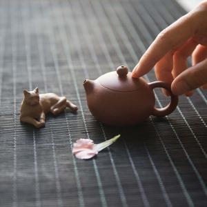 chaozhou-zhun-clay-xishi-teapot-2-5