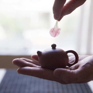chaozhou-zhun-clay-xishi-teapot-2-6