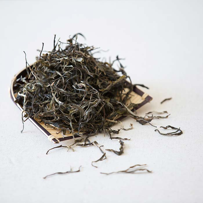 mao-cha-raw-puer-pm-sh-12