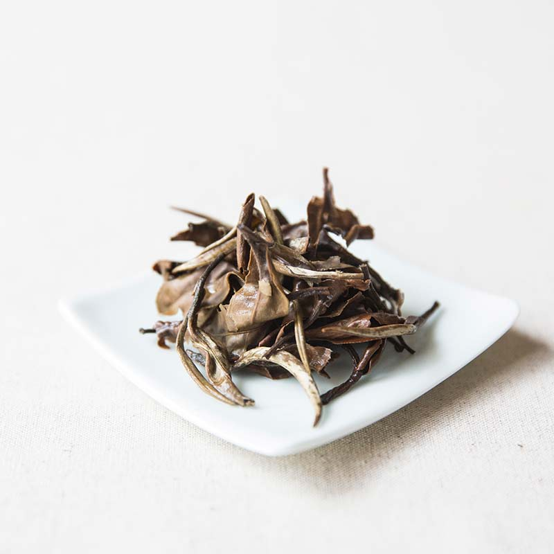 giant-white-yue-guang-bai-moonlight-white-tea-2