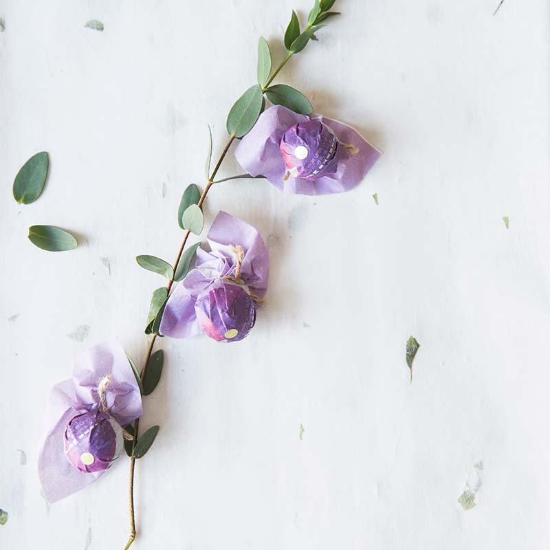 plum-beauty-mengsong-raw-puer-4