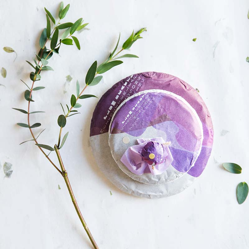 plum-beauty-mengsong-raw-puer-6