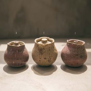 germination-tea-jar-2-1