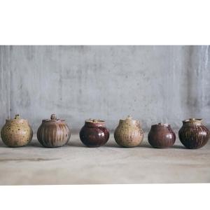 germination-tea-jar-4