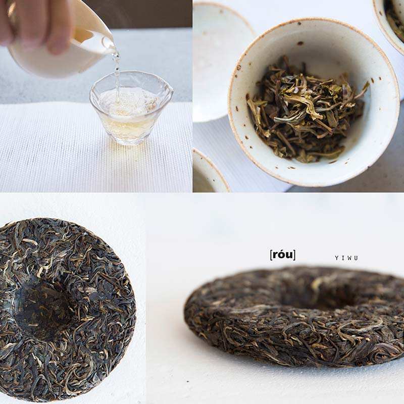 palate-raw-puer-tasting-set-10