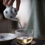 yayoi-porcelain-teapot-6