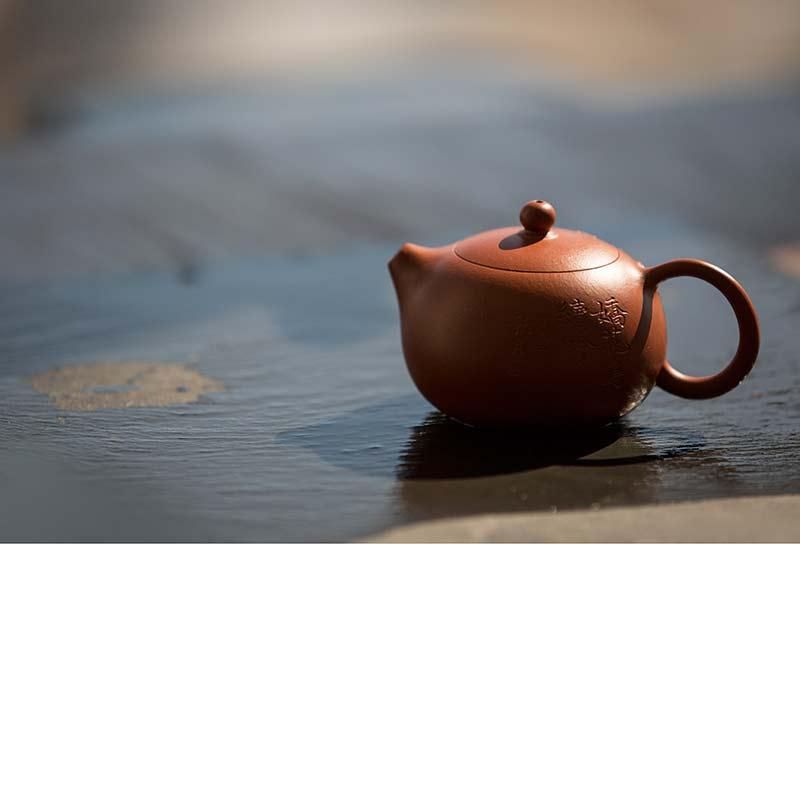 Idyll Yixing Zisha Clay Xishi Teapot (Bird)