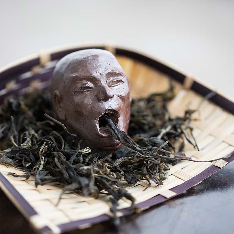 tea-drunk-tea-pet-4-19-16