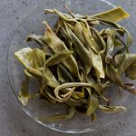 bitter-end-xtra-lao-man-e-raw-puer-7