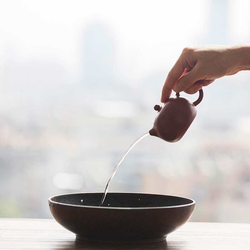Idyll Yixing Zisha Clay Xishi Teapot (Plum Branches)