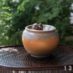 1001-guardian-waste-bowl-11-18-13