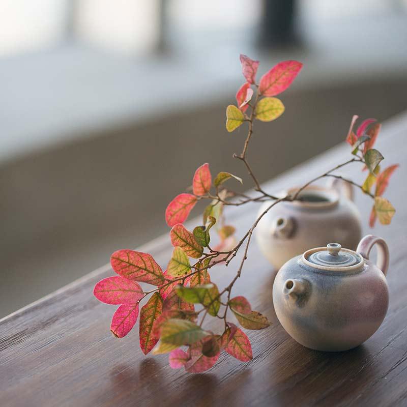 1001-unicorn-teapot-0