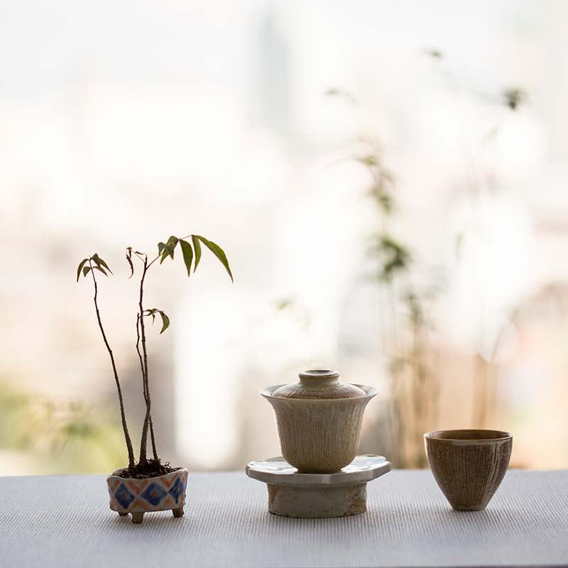 tiramisu-teacup-21
