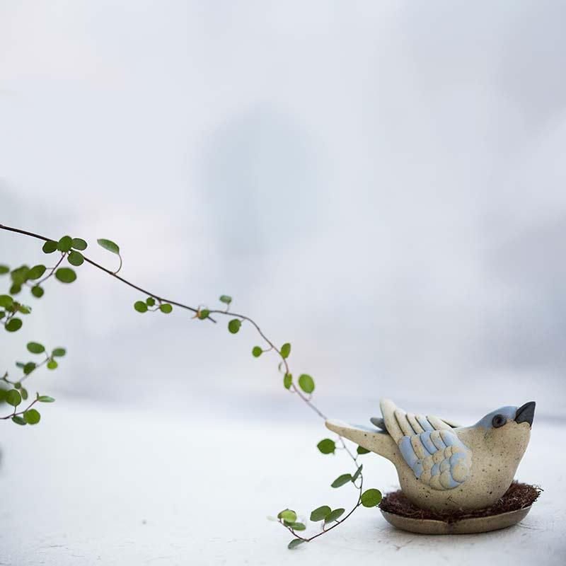 birdie-num-num-tea-pet-10