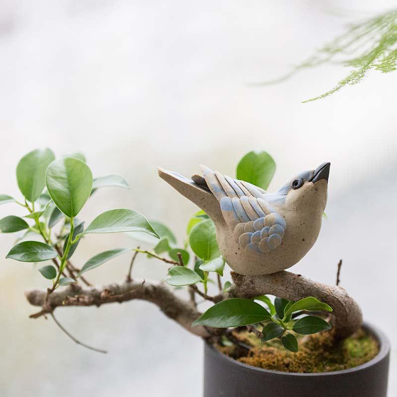 birdie-num-num-tea-pet-2