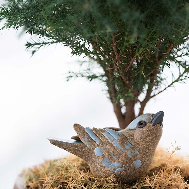 birdie-num-num-tea-pet-3