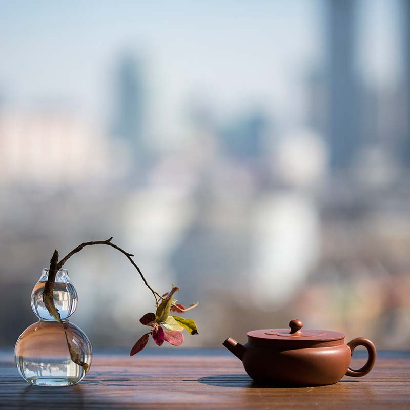 vaste-yixing-zini-teapot-6