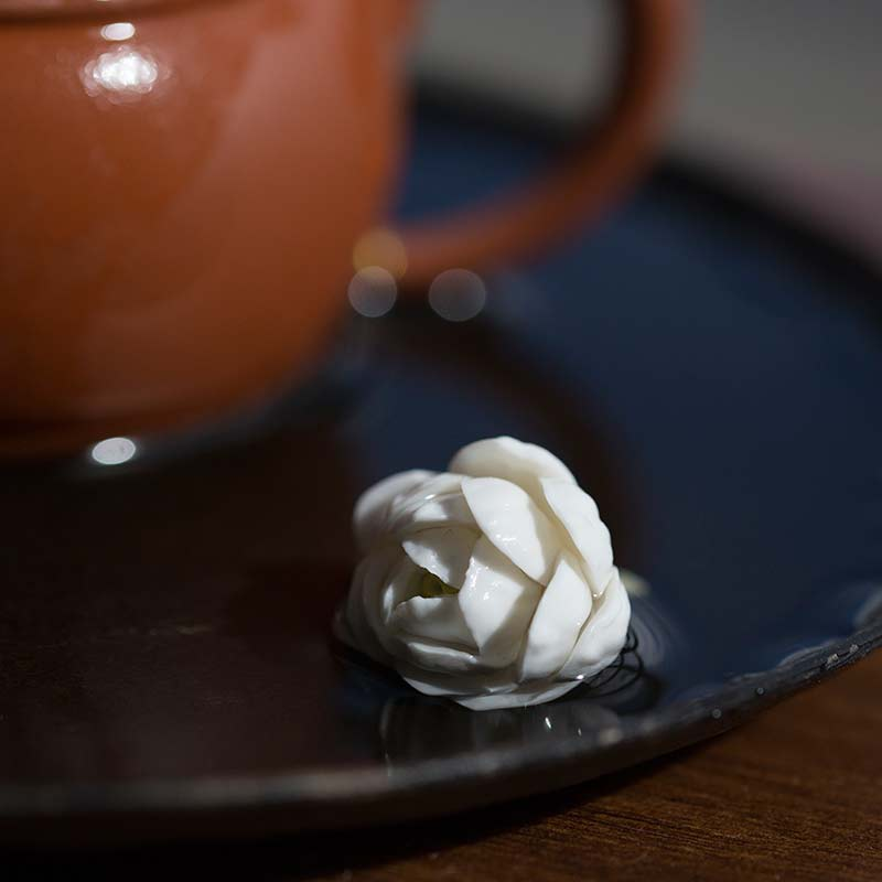Jasmine Flower Tea Pet