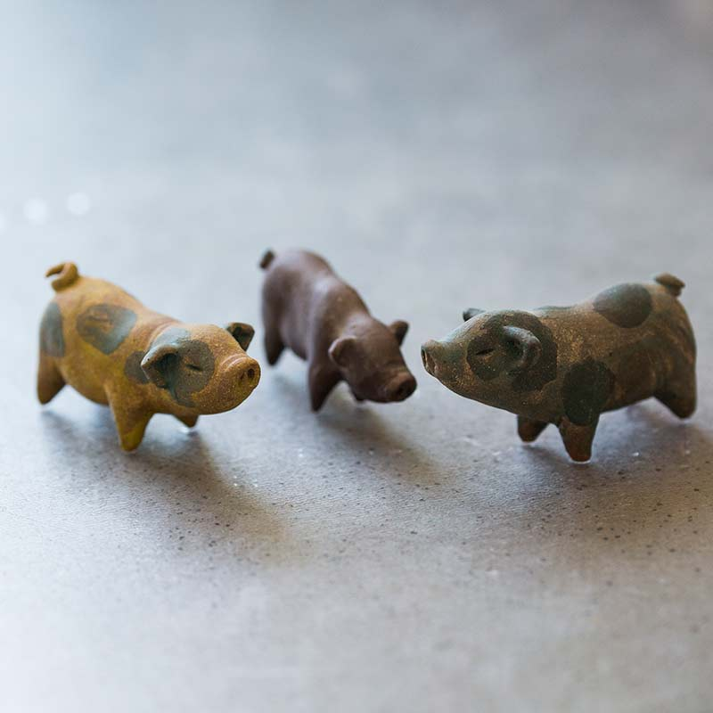 year-of-the-pig-tea-pet-16
