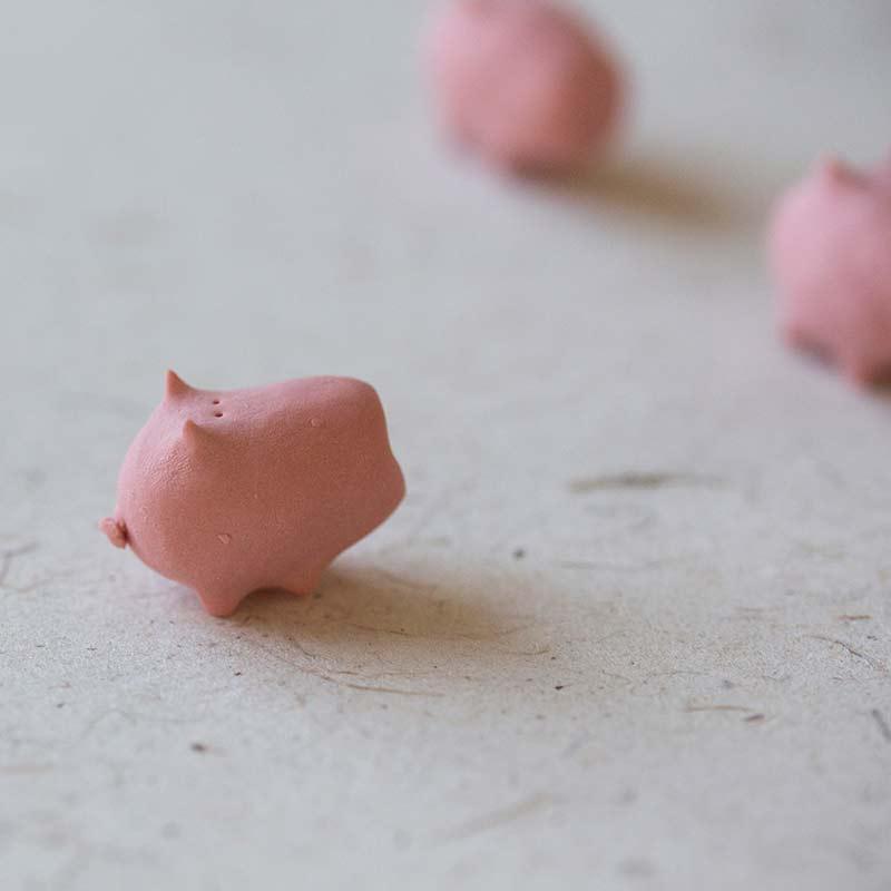 sugarcube-pig-tea-pet-4
