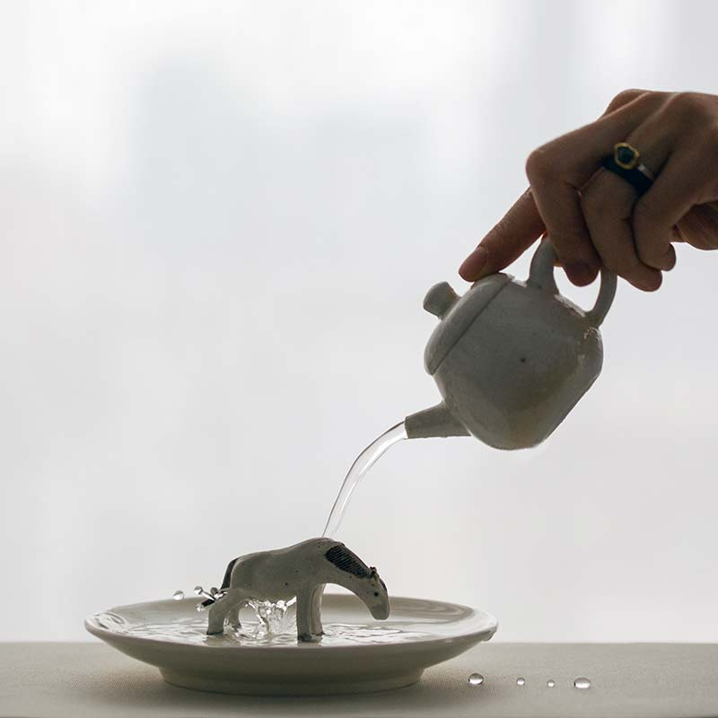 sublime-wood-fired-teapot-wu-13