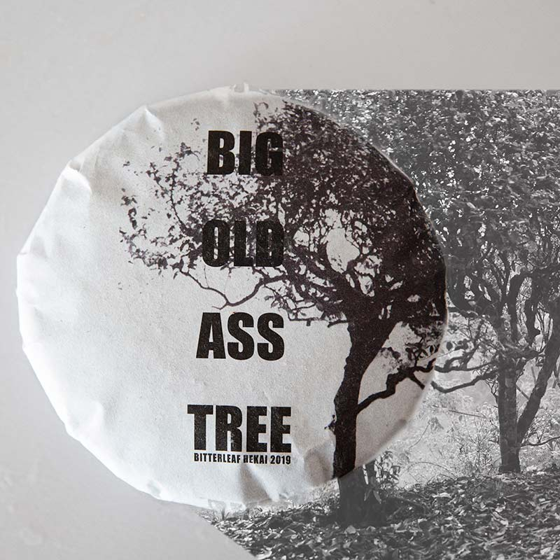 Big Old Ass Tree 2019 Hekai Raw Puer