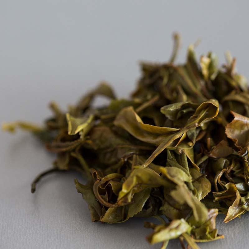 Skinny Dip 2019 Spring Simao White Tea
