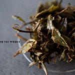 guanyang-exp-2018-fuding-baimudan-white-tea-4