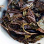 Little Mountain 2016 Fuding Shoumei White Tea