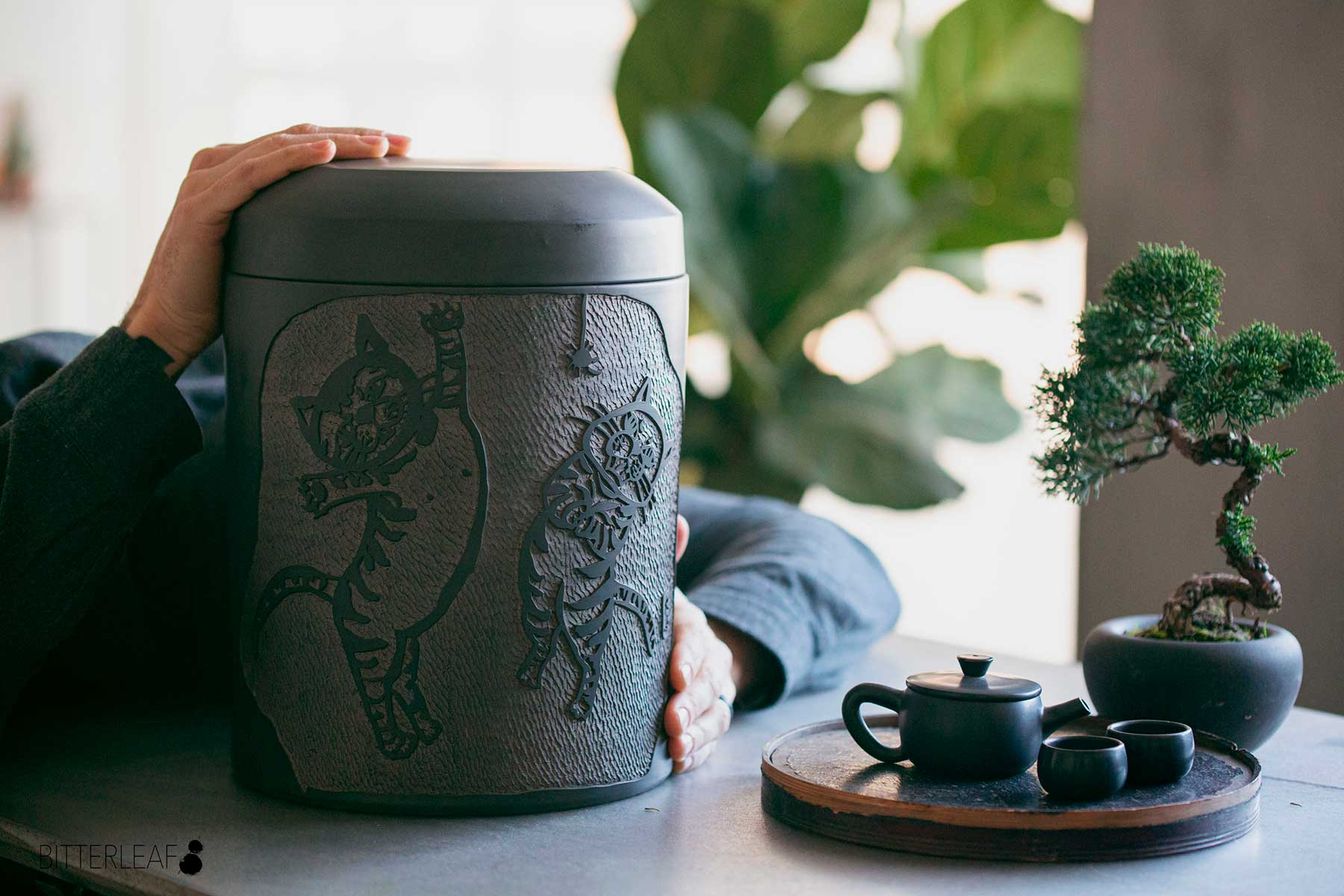 How to Store White Tea (or Just About Any Other Type of Tea)