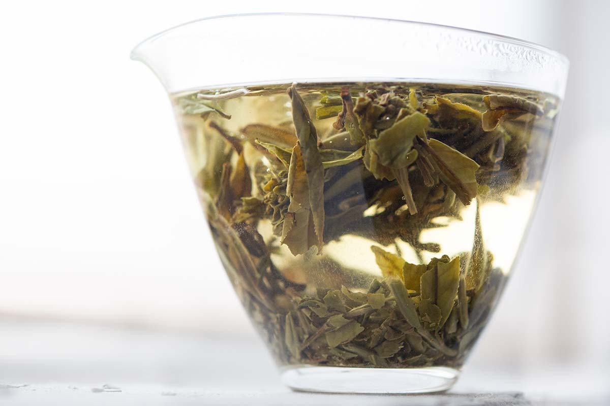 Little Mountain Platinum 2019 Fuding Baimudan White Tea