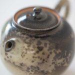 1001 Teapots -Teapot #246