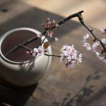 Abundance Vase/Bowl
