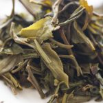 Of Course I Still Love You 2021 Spring Mansa Raw Puer